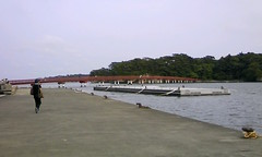 (_GAMI_) Tags: cameraphone bridge matsushima miyagi