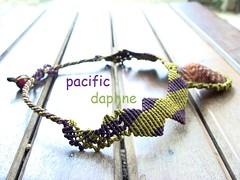 Macrame del Caribe (pacificdaphne) Tags: colombia handmade macrame makrame artesania caribe hechoamano macramé χειροποίητο μακραμέ caminomojosmayo