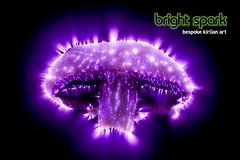 kirlian mushroom (Bright Spark Kirlian Art) Tags: mushroom photography energy natural science stunning electricity organic aura kirlian auras seymon kirlianphotography naturalenergy electrographs energyauras
