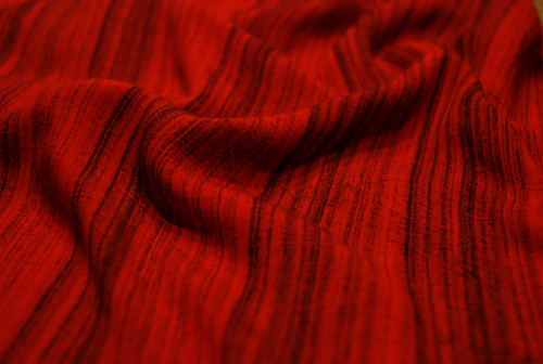 Red Shawl - IMGP5101