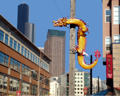 yellow dragon on pole (Seattle rainscreen) Tags: seattle yellow downtown chinatown dragon utilitypole seattlest seattlestpix