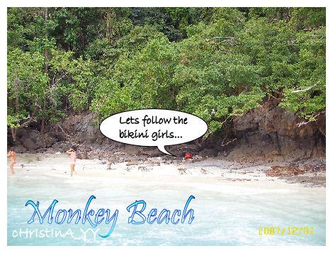 Monkey beach on Phi Phi Don