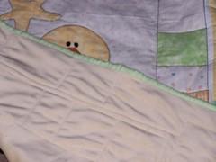 Silkie Baby Quilt