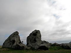 speckonaspeck (ne0nicecream) Tags: bodegabay winecountry mammothrocks californiashore