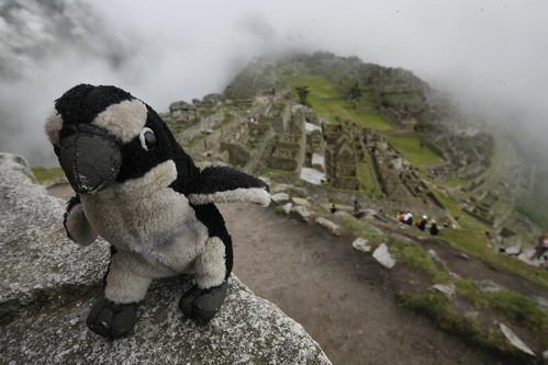 Me in Wayna Pichu, Machu Pichu