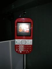 IMGP2966 (Large)