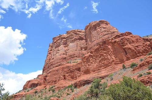 Arizona 2011 542