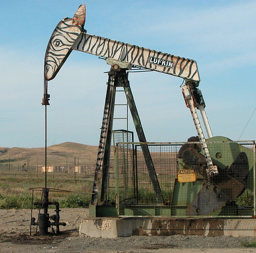 Zebra in Coalinga 'zoo'—Oil pump still at work