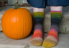 Silk Garden Lite Socks (LollyKnit) Tags: autumn socks pumpkin knitting stripes knits noro stockinette socktoberfest silkgardenlite