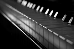 Universal Language (tamilajoon) Tags: blackandwhite bw unity piano eternity pianobars languageofmusic