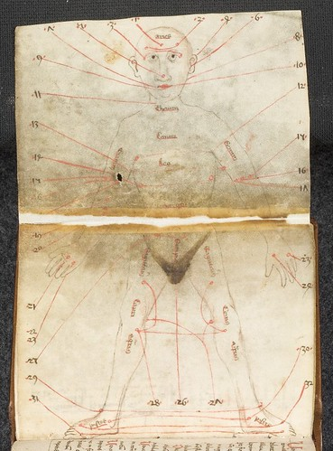 Cod. Pal. germ. 644 - Medizinische Texte und Traktate - Süddeutschland, um 1460 jpeg a