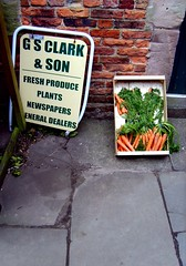 A Small Selection (Davy Ellis) Tags: shop northumberland produce carrots bamburgh grocers