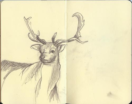 deer_small