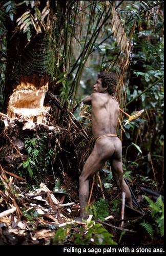 28 imágenes sorprendentes de un pueblo que aún vive en los árboles | Tree People por George Steinmetz ceslava 12