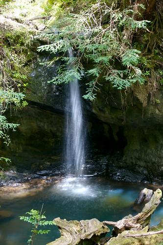Sempervirens Falls - Big Basin Redwoods State Park