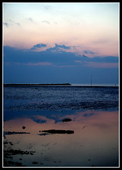Hampton (The God Cell) Tags: ocean trip travel light sunset sea vacation england sky urban panorama cloud storm color colour bird tourism beach water colors beautiful modern clouds sunrise wonderful dawn licht kent fantastic scenery rocks wasser mood moody colours view dusk lumire couleurs gull awesome natureza scenic natuur atmosphere paisaje olympus paisagem colores beaut stunning relection vista outlook hampton overlook paysage exploration incredible farbe couleur breathtaking paesaggio beautifulscenery waterscape e500 magiclight ngp dramaticlight infinestyle nicholasgodsell nicholasgodsellphotography