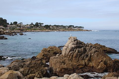 IMG_2986 (mudsharkalex) Tags: california pacificgrove pacificgroveca