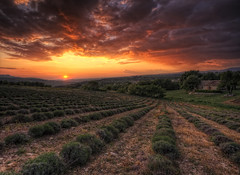 Un soir dans le Luberon (Girolamo's HDR photos) Tags: light sunset sky sun sunlight house france nature clouds canon french landscape photography gold spring luberon hdr vaucluse girolamo photomatix tonemapping canoneos50d caseneuve cracchiolo omalorig wwwomalorigcom gettyimagesfranceq2