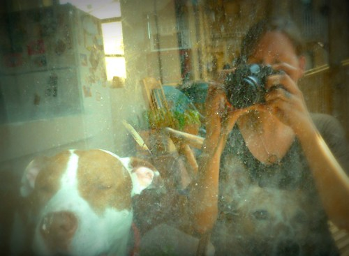 self portrait with doggies