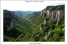 Gorges de la Jonte (Lozre) (Michel Seguret (+ 4.400.000 views)) Tags: fab verde green nature landscape fun nikon vert
