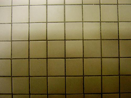 squares — nov 20