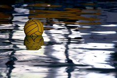 Water Polo (let's fotografar) Tags: water gua ball interestingness piscina swimmingpool bola waterpolo ploaqutico