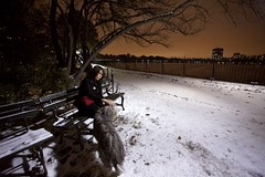 Briana and Birdie by the Reservoir | New York City (ldandersen) Tags: nyc newyorkcity dog snow newyork centralpark reservoir beardie beardedcollie posttoflickr brianamowrey