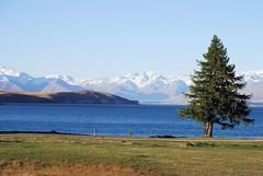 Lake Tekapo (M X P) Tags: new lake zealand tekapo