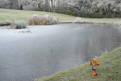 frosted pond (girl enchanted) Tags: lake fish forest pond woods frost teddy kenner blythe inlaws dolly fishies frosted