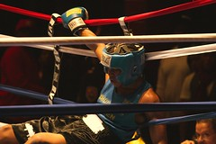 Down and Out (EASY GOER) Tags: sports knockout boxing fighting amateurs knockedout goldengloves sweetscience