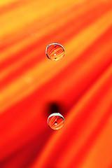 Orange droplets