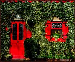 AN IRISH COTTAGE (CARLOW, IRELAND) (Edward Dullard Photography. Kilkenny, Ireland.) Tags: kilkenny ireland photographic irland harmony emeraldisle ierland fpc dullard blueribbonwinner mywinners anawesomeshot colorphotoaward edwarddullard overtheexcellence kilkenny1953 wonderfulworldmix llovemypic societyedward