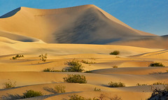 Dunes (PapaGA1) Tags: absolutelystunningscapes