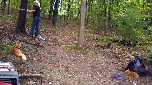 20080927 - camping - 169-6909 - Carolyn, Oranjello, Lemonjello - tying rope around tree - please click through to leave a comment on FlickR