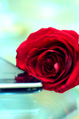 من حقي { أحبهـ (ًWeda3eah*) Tags: blue red sky flower love me its by for call soft clear 3g enough qatar iphone a weda3eah articulateimages