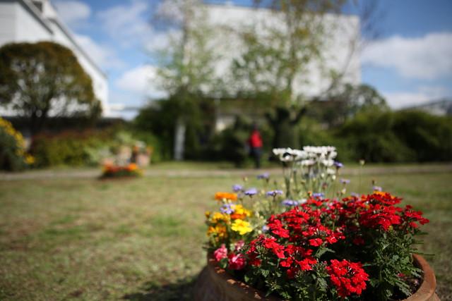 屋上の庭園