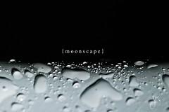 Moonscape (Juli Kanini) Tags: macro 30 shower drops nikon h2o bathtub albania extensiontube tirana d80 nikkor75300 thechallengefactory