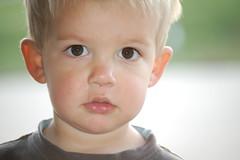 Bennett - up close