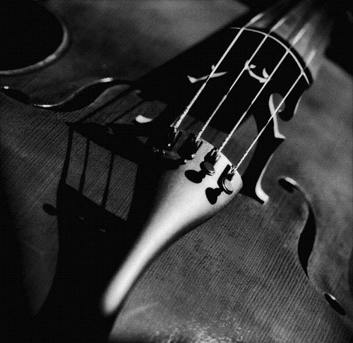 Cello by schoeband.