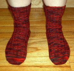 Toe Up Socks in Schaefer Lola - Front View
