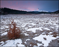 Mount Hood WInter Sunrise (realkuhl) Tags: red copyright clouds sunrise john bravo all  rights reserved mounthood inspiring alpenglow earlylight naturesfinest landscapephotography redclouds 24degrees snowyfield lehmkuhl anawesomeshot