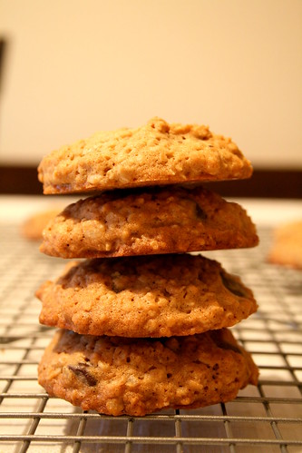 oatmeal chocochip cookies 022
