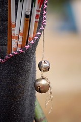 summer macro sports bells washington handmade hunting pacificnorthwest arrows archery tbw