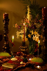 /Happy new Persian Year (mohammadali) Tags: persian iran persia iranian  iranians persians norooz norouz