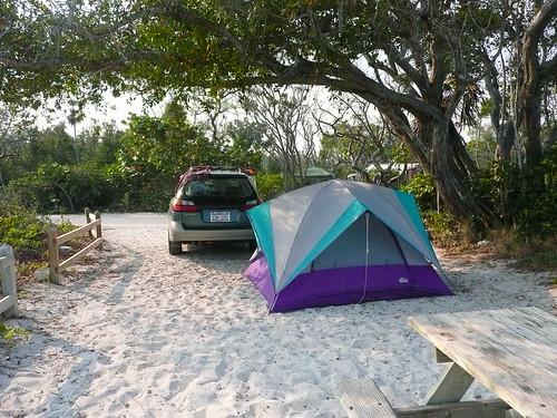 purple tent!