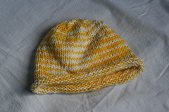 hat for the lion cub