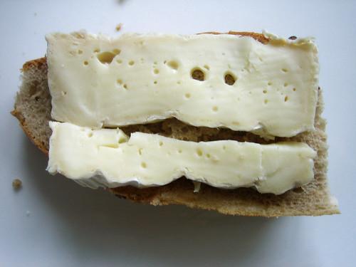 Bert Cheese