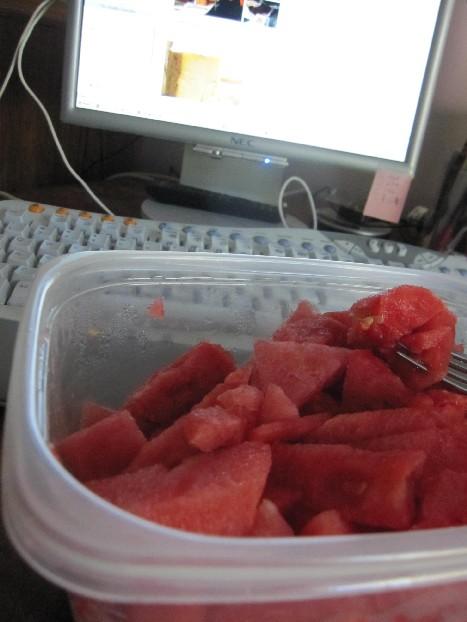 watermelon_morning