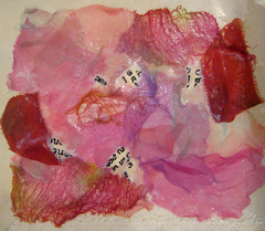 Fused Sheer Collage workshop ~ student work