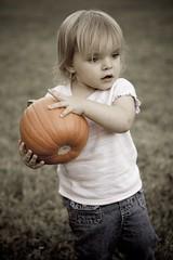 Lexi Pumpkin 1